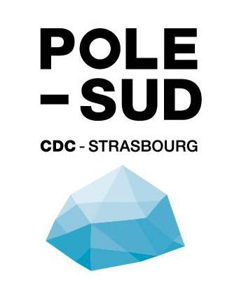 Logo Pole Sud